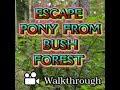 Escape Pony from Bush Forest Video Walkthrough