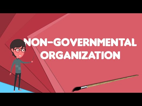 What Is Non-governmental Organization?, Explain Non-governmental Organization