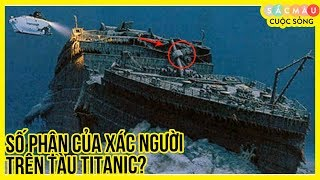 Titanic - Sự Thật Rùng Mình Về Thân Xác Người Gặp Nạn Trên Con Tàu Titanic
