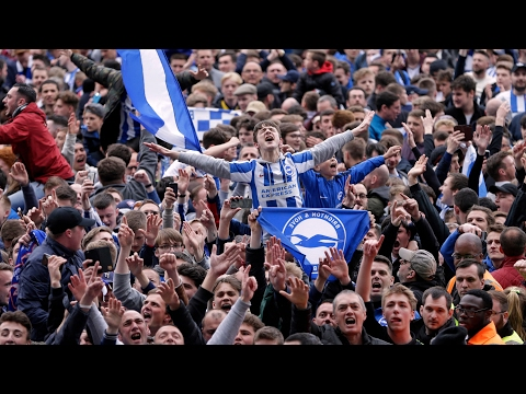 Brighton & Hove Albion seal promotion to the Premier League – video report