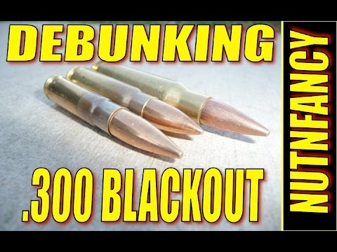 300 Blackout: Best Cartridge You Don't Need [POU]