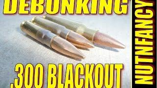 300 Blackout: Best Cartridge You Don't Need [POU]