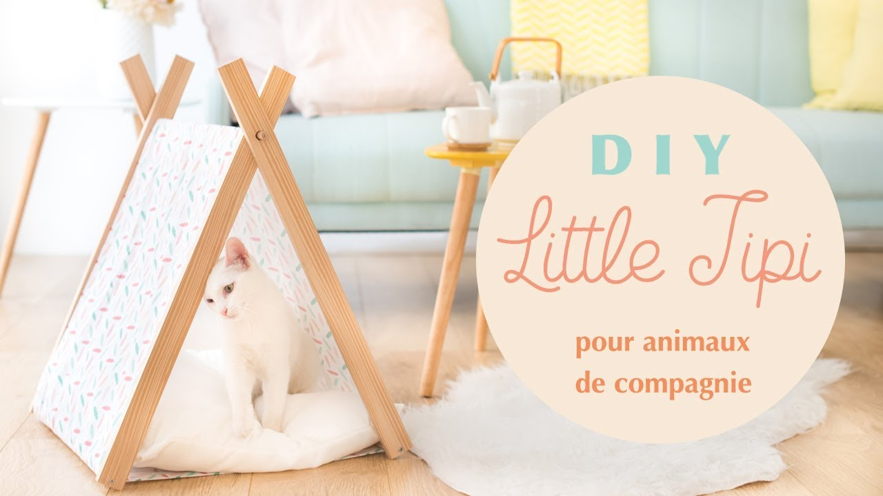 Tipi Pour Chat A Fabriquer diy little tipi pour animaux de compagnie