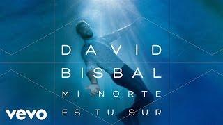 David Bisbal - Mi Norte Es Tu Sur (Audio)