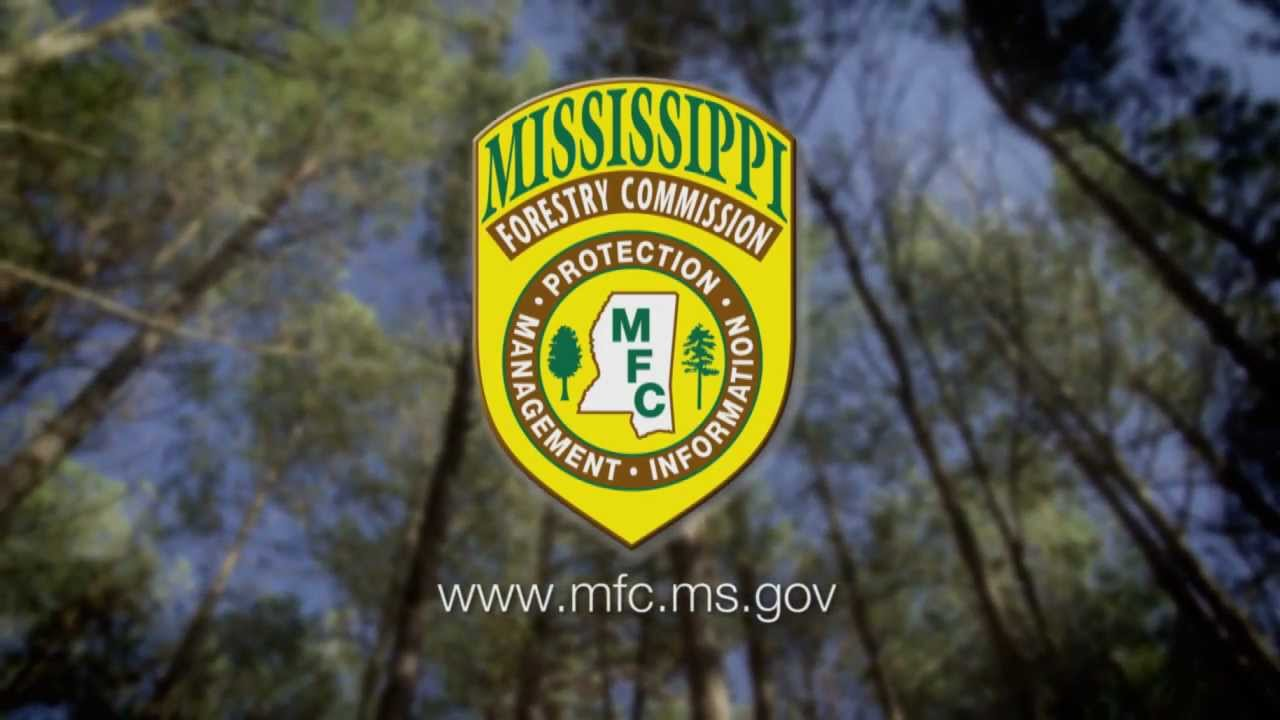 MercyTree Forestry & Wildlife Services - Home