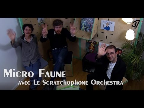 Micro Faune avec Le Scratchophone Orchestra