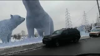 Полярные медведи в Ростокино