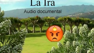LA IRA (COMO CONTROLARLA). Audio documental.
