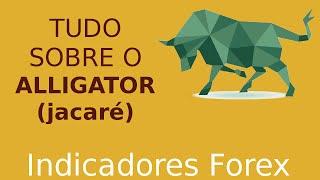 Alligator - Um indicador para você DEVORAR O MERCADO forex