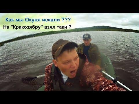 Рыбалка в Кушве - Как мы с Димоном Окуня искали ...
