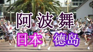 """日本之旅:德岛县 德岛市 德岛知名的""""阿波舞(Awa Odori)庆典""""、"""" 傻子舞蹈(Ahouodori)"""" 德岛16 Moopon"""