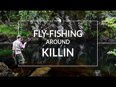 DRY FLY FISHING FOR WILD BROWN TROUT | SCOTTISH HIGHLANDS | RIVERS LOCHAY & DOCHART