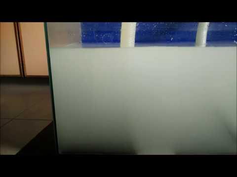 Nanobubble Generator For Aquaculture
