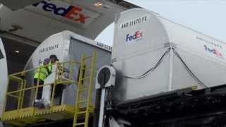 FedEx B777 Loading Demo - CGN Airport - 22.09.2013