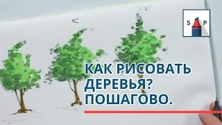 Как рисовать деревья маркерами пошагово? Простыми приемами для начинающих.