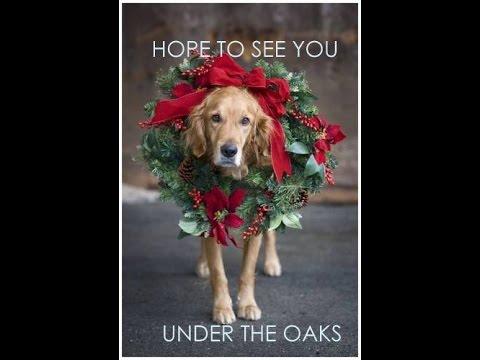 Christmas Under The Oaks.Christmas Under The Oaks 2016