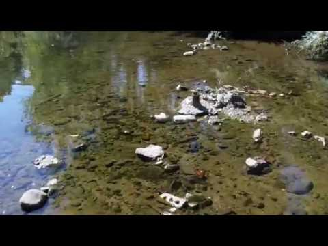 Exploring Inner City Creek Round 6:  Treasure Hunting & The Exit
