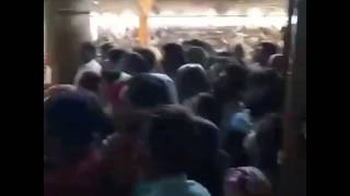 श्री राधा रानी मंदिर राजभोग लाइव आरती दर्शन (श्री प्रवीण गोस्वामी जी द्वारा)