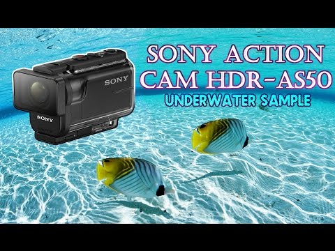 Sony Action Cam HDR-AS50 Underwater Video Sample