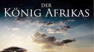 Der König Afrikas - Tiere ganz nah (2013) [Dokumentation] | Film (deutsch)