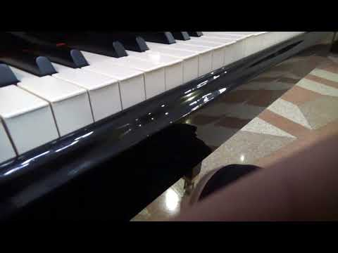 Lunchbox Piano Play