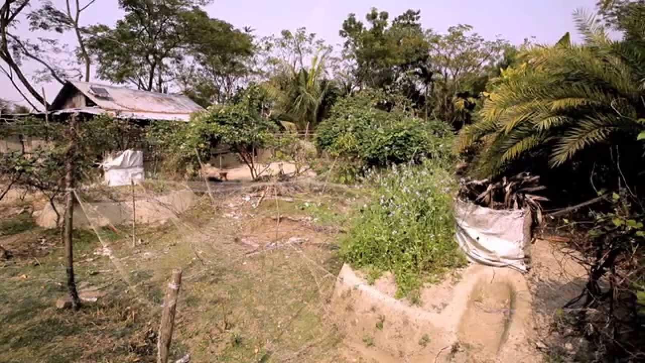 Amrai Pari (Season 1) - Episode 04 - Keyhole Gardening - YouTube