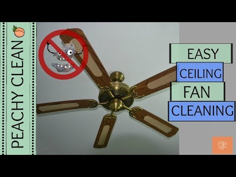 Cleaning Your Ceiling Fan is Now Fun & Easy!