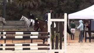 Elizabeth Bierman & Czech It Out Rocking Horse Winter 3 Preliminary Horse Trials 2015