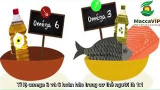 So sánh 2 loại dầu thiên nhiên là Dầu hạt Macca và Dầu Olive - Loại nào tốt hơn?