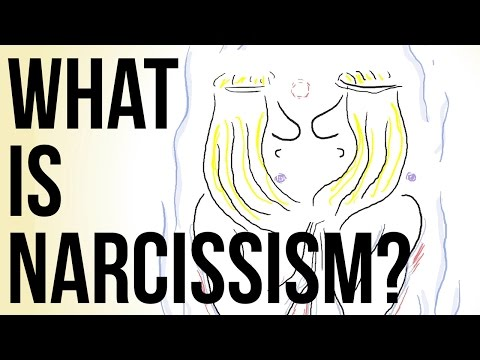What Is Narcissism?