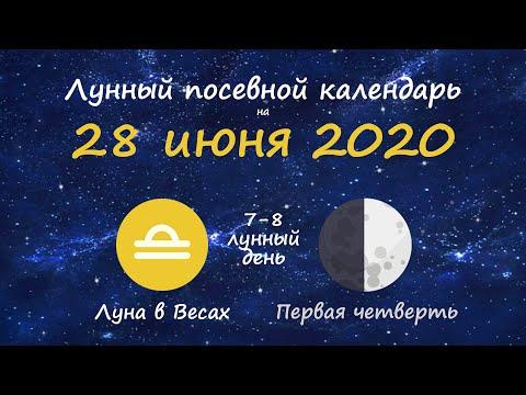 [28 июня 2020] Лунный посевной календарь огородника-садовода