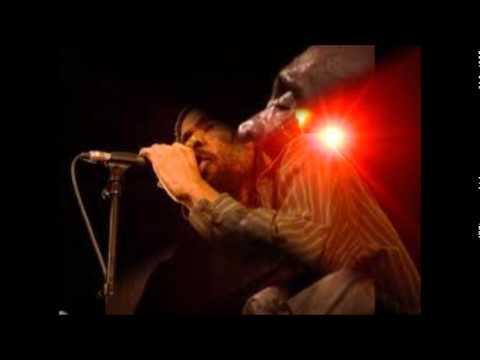 Israel Vibration & The Roots Radics - Greedy Dog - Album