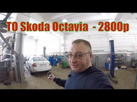 Первое ТО на Skoda Octavia. Разблокировали Gett/StasOnOff
