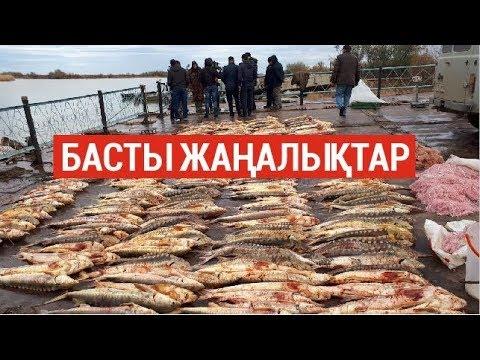 Басты жаңалықтар. 23.08.2019 күнгі шығарылым / Новости Казахстана