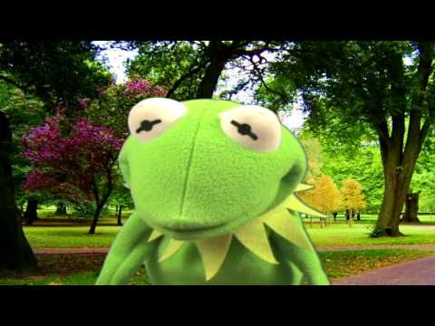 The Muppet Show - Kermit The Frog - It's Not Easy Being Green