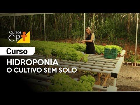 Clique e veja o vídeo Curso Hidroponia - O Cultivo sem Solo