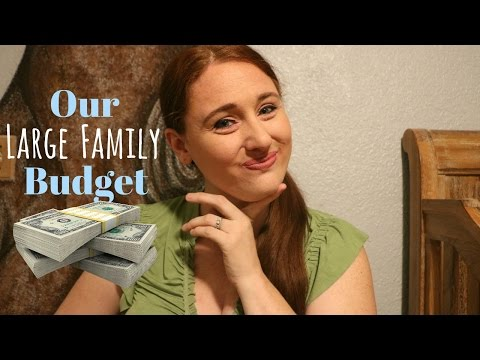 OUR LARGE FAMILY BUDGET || Single Income Family