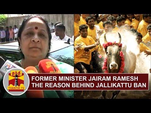 Former Minister Jairam Ramesh the reason behind Jallikattu Ban | Jayanthi Natarajan | Thanthi TV