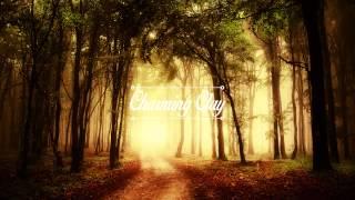 Thalstroem & Grambow - Spacelion (Marlon Hoffstadt & HRRSN Remix) | Charming Clay