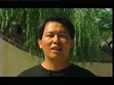 Zhan Zhuang Qi Gong - Lam Kam Chuen - Stand still be fit - El camino de la energia   - Día 1