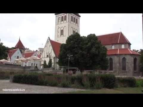 Pesca a mosca en Estonia