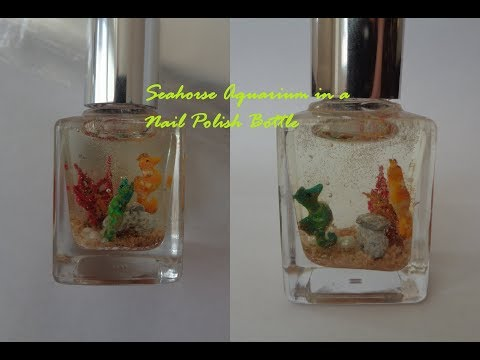 Miniature Seahorse Aquarium in a Nail Polish Bottle