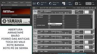 Video MULTI KIT SÃO JOÃO 7 RITMOS RUBINHO SAMPLES 2018 download MP3, 3GP, MP4, WEBM, AVI, FLV Oktober 2018