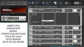 Video MULTI KIT SÃO JOÃO 7 RITMOS RUBINHO SAMPLES 2018 download MP3, 3GP, MP4, WEBM, AVI, FLV Juli 2018