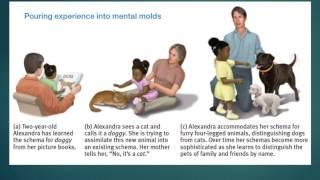 ap psychology unit 9 development part 2