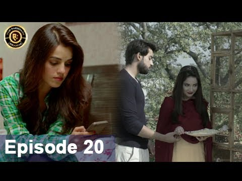 Rasm-e-Duniya – Episode 20  –  8th June 2017 – Armeena Khan & Sami khan Top Pakistani Dramas