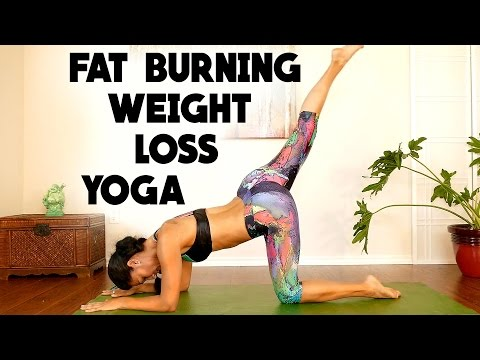 Complete Beginners Fat Burning Workout at Home
