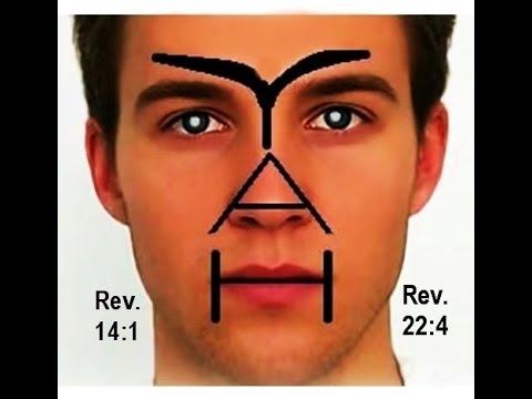 YAHWEH  The only TRUE GOD!!! PROOF  Gods Name YAH Is Written On Your Face & Throughout Creation!!