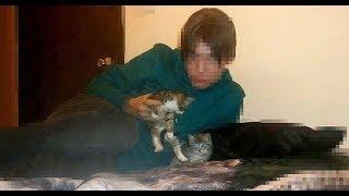 Порно с котом