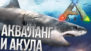 ARK: Survival Evolved - Акваланг и Акула -  АРК (Выживание №5,1440p)(Ark-Club◅ /☆/ Просто перейдите по ссылке http://steam://connect/5.178.87.86:29715 /☆/ САЙТ - https://vk.com/arkclub_server МОДЫ ДЛЯ СЕРВЕРА..., 2016-07-07T09:30:01.000Z)